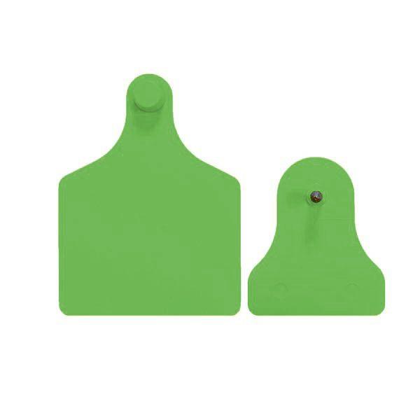 f4m2-green.jpg