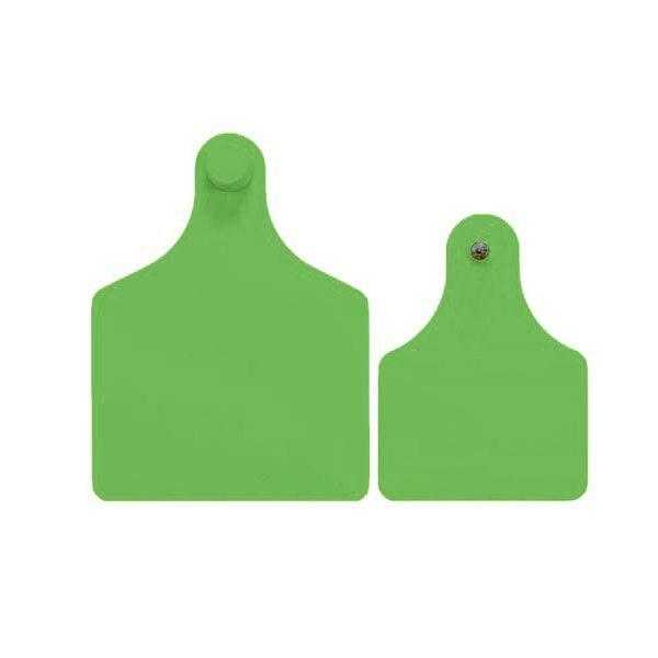 f4m3-green.jpg