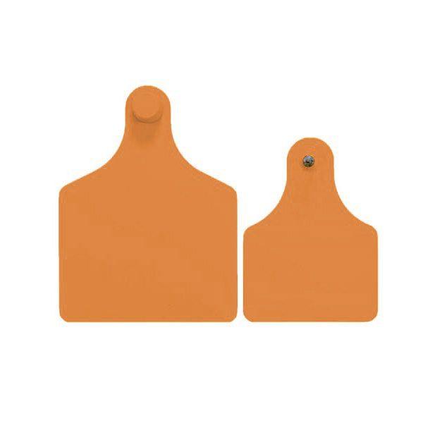 f4m3-orange.jpg