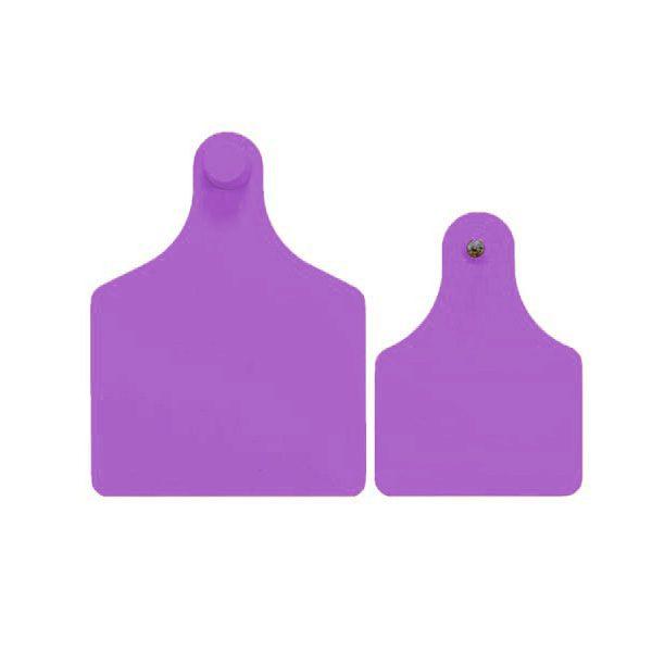 f4m3-purple.jpg