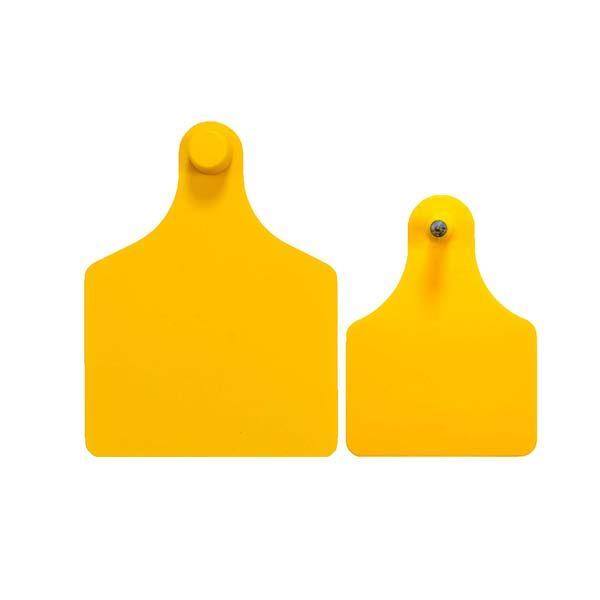 f4m3-yellow.jpg