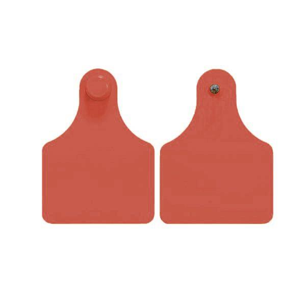 f4m4-red.jpg