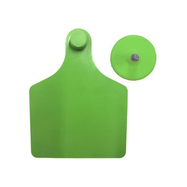 tag-green1.jpg