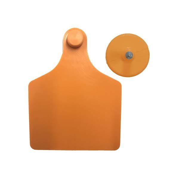 tag-orange1.jpg